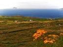 Die Skelligs vor der Küste von Kerry